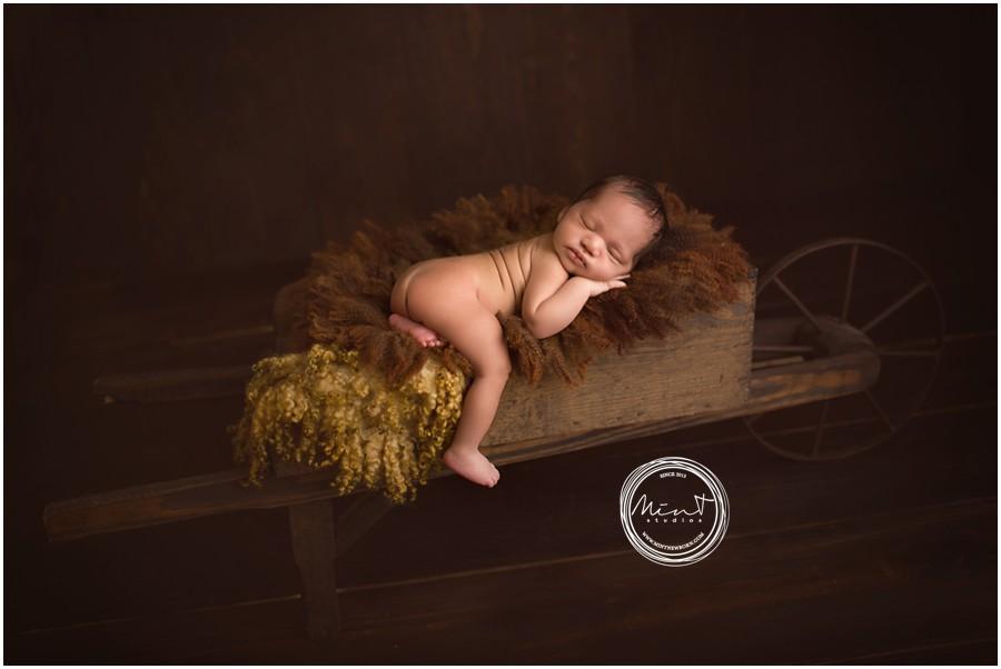 Monterey-Newborn-Photographer_2361